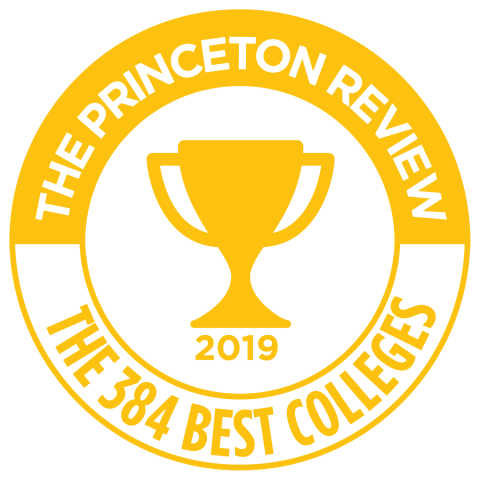 Princeton Review Logo - Best Colleges