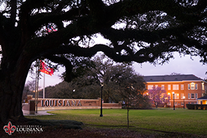 Desktop wallpaper of the Louisiana Welcome Wall framed by an oak tree