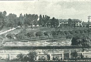 Century Oaks