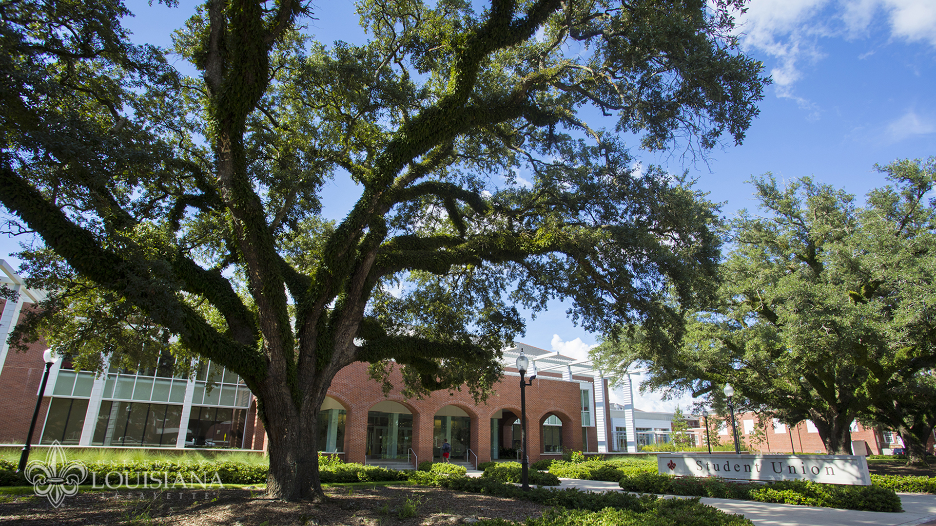 Image of the University of Louisiana at Lafayette Student Union and live oaks.