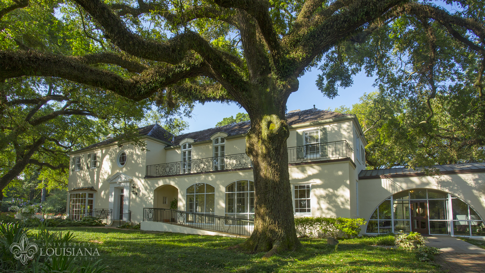 Photo of the University of Louisiana at Lafayette Alumni Center shaded by our mighty live oaks.